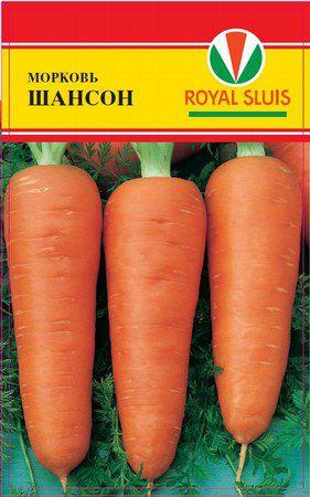 Самые популярные сорта моркови